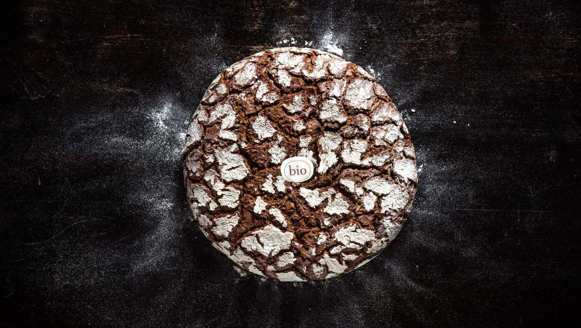 bread_new
